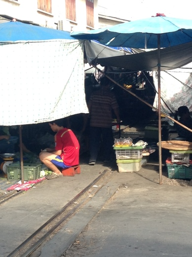 The market at Mae Klong just south west of Bangkok with it's famous railway line running straight through the middle! Unfortunately I wasn't there when a train passed but you can imagine how tight the squeeze is!