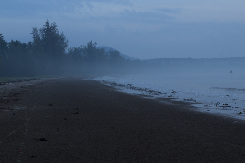 An early, misty, sandy start to the day